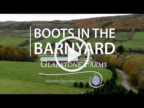 Boots in the Barnyard: Gladstone Farms