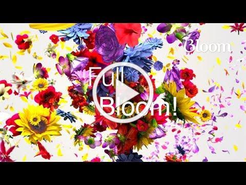 Bloom At Belfair Life Enrichment 21