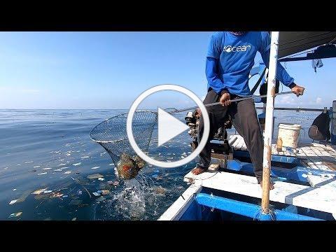 4ocean Partnerships   Ocean Conservancy