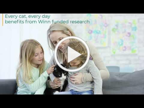 Winn Feline Foundation - Every Cat, Every Day Benefits