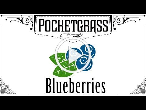 Pocketgrass Episode 10: Blueberries