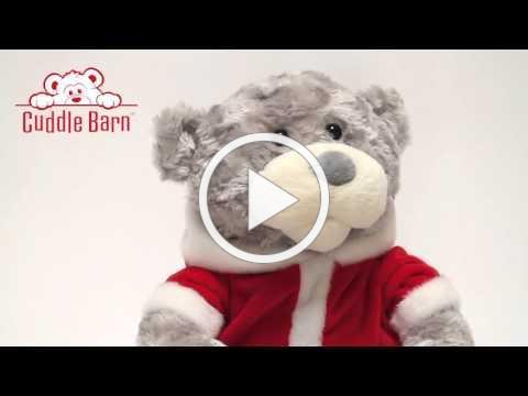 Cuddle Barn - Storytime Teddy (Grey)
