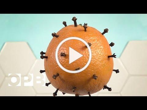 COVID-19 Vaccines, Explained With Fruit