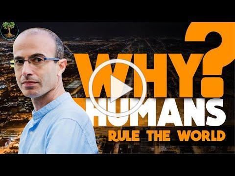 Why Humans Rule The World | Yuval Noah Harari