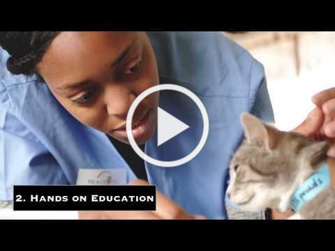 World Vets International Veterinary Medicine (IVM) Program ECUADOR