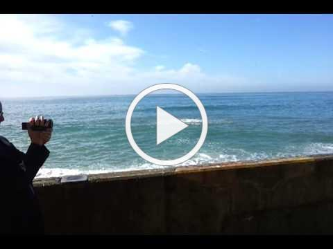 Bloomberg Video
