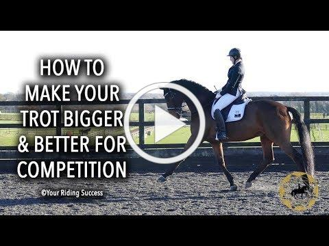 How To Make Your Trot Bigger And Better For Competition - Dressage Mastery TV Ep230