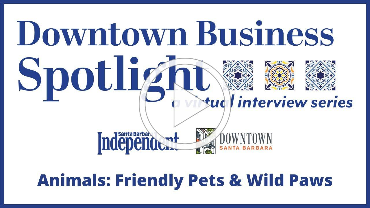 Downtown Business Spotlight - Animals: Friendly Pets & Wild Paws
