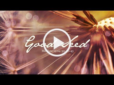 Sunday, July 19 - Worship at AdventELC