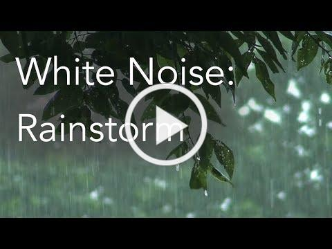 Rainstorm Sounds for Relaxing, Focus or Deep Sleep | Nature White Noise | 8 Hour Video