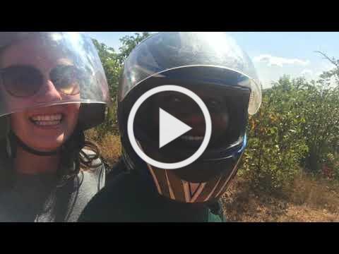 YAV Update Video