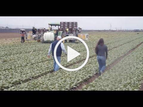 Santa Barbara County Farm Day 2020: Babé Farms
