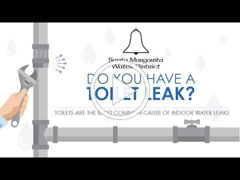 Do You Have a Toilet Leak?