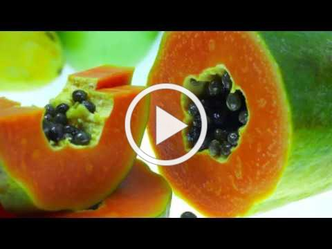 The Guatemala Papaya Project