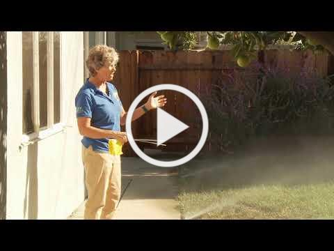 How to Check Your Sprinklers for Leaks & Inefficiencies