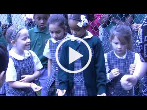 First Grade Butterfly Release