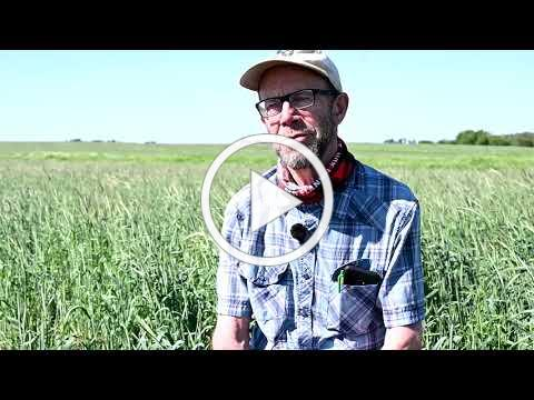Iowa landowner & operator make cover crops work for their operation