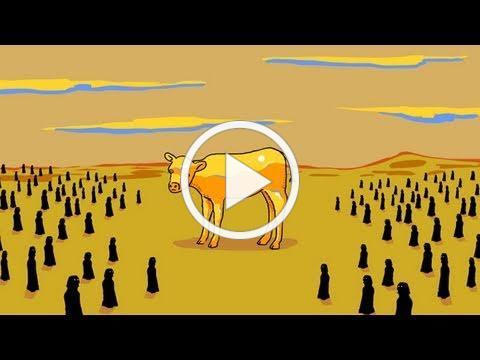 Parshat Ki Tisa: Seeing the Golden Calf