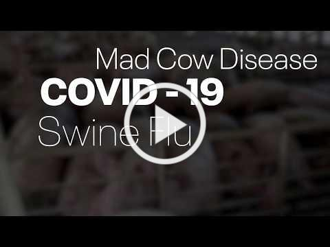 COVID-19 - Alliance For Animals PSA