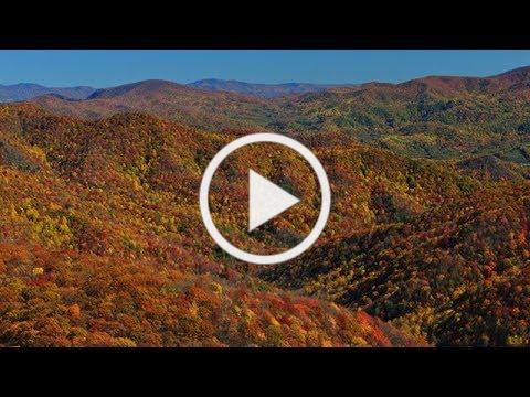 Tennessee Viewfinders for the Colorblind   TN Vacation