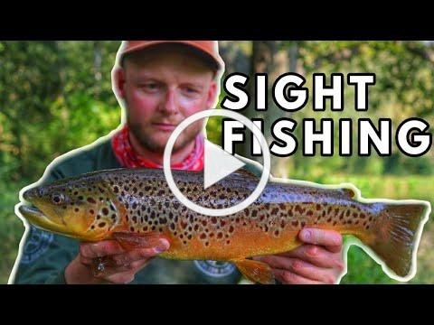 Sight Fishing The River Dever - Upper Test Dry Fly: Chalkstream Trip Part 3